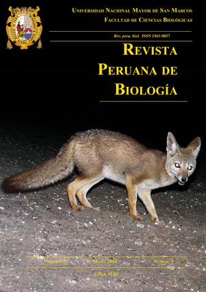 Lycalopex griseus